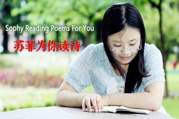 [Sophy Reading Poems For You]-Sophy Poetry & Translation Website苏菲诗歌&国际翻译网